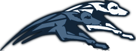 logo sleddogs team
